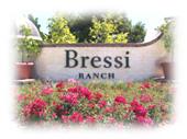mnt.bressi.sml